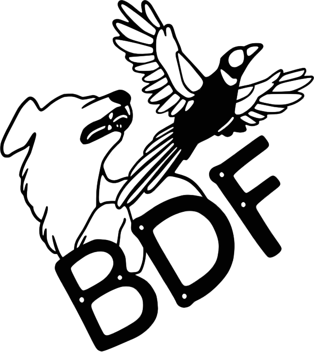 Birddog Fabrication Cooperative